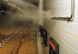 Системы туманообразования на фермах