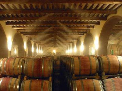 СУвлажнение в винных погребах
