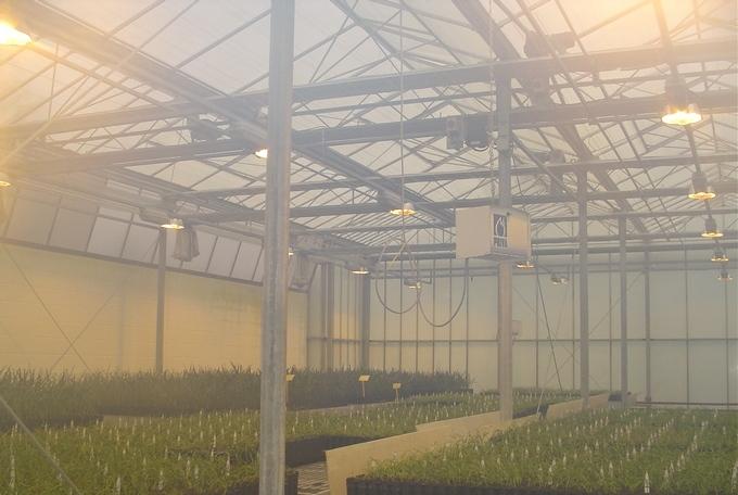 Система туманообразования для теплицы и оранжереи